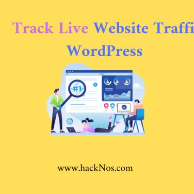 track live website traffic on wordpress